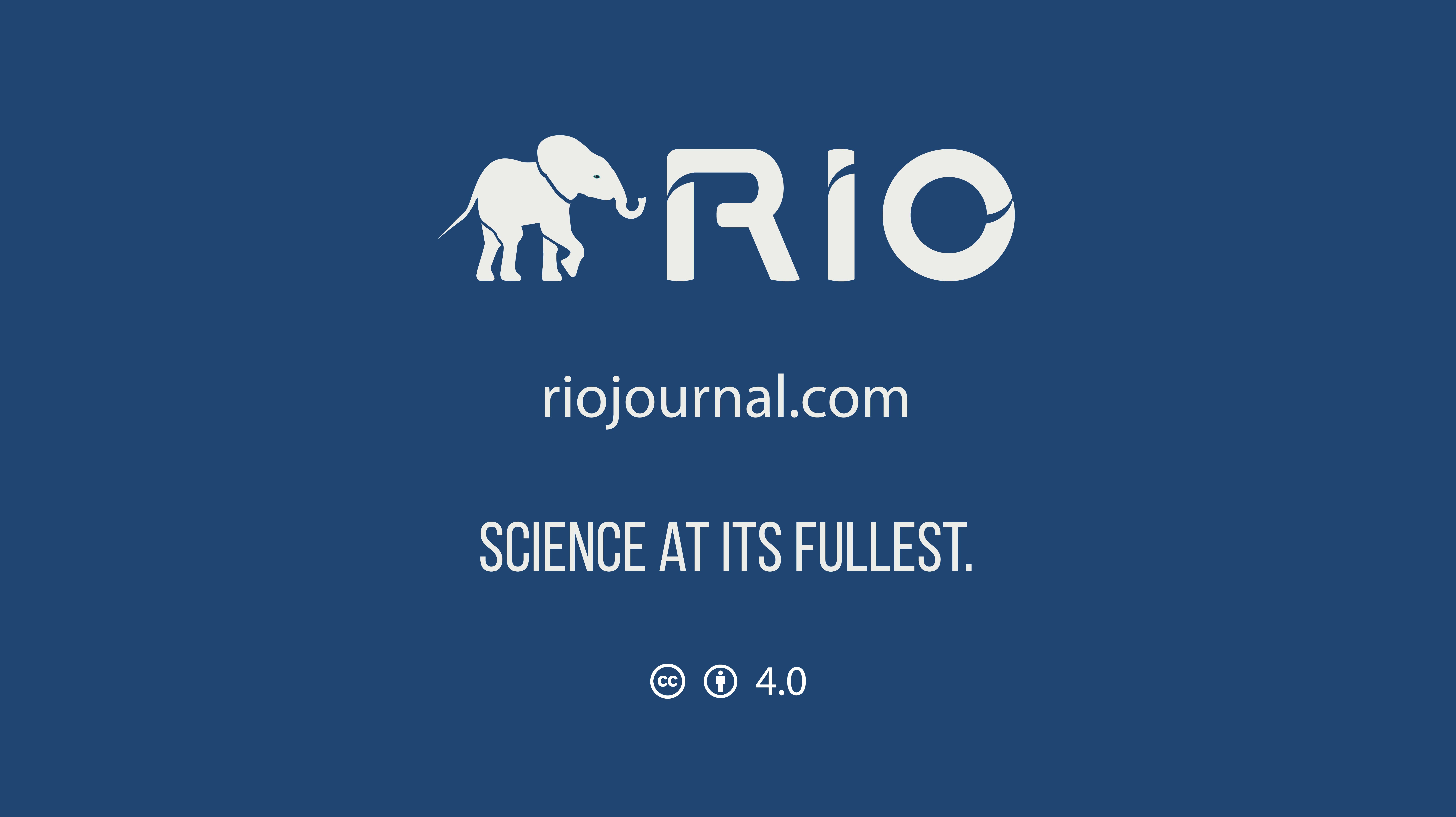 RIO_blog-25